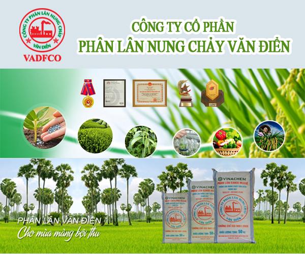 cong-ty-co-phan-phan-lan-nung-chay-van-dien