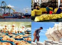 Năm 2010: Cơ cấu hàng xuất khẩu chuyển dịch mạnh mẽ