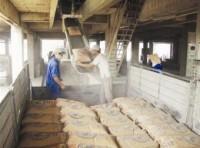 Năm 2011 có thể xuất khẩu 1,5 triệu tấn xi măng