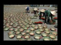 Bà Rịa Vũng Tàu: Hoạt động khuyến công mang lại hiệu quả thiết thực