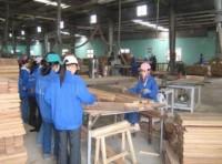 Năm 2012: Ngành gỗ tập trung vào các sản phẩm chất lượng cao!