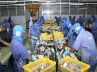 Top 10 thị trường nhập khẩu thủy sản Việt Nam năm 2012