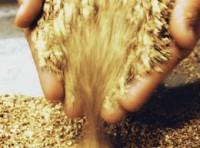 Giá vàng được dự báo sẽ tái lập mức kỷ lục 1.432USD/ounce