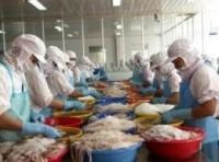 Quy định mới về kiểm soát thủy sản xuất khẩu vào thị trường Hồng Kông