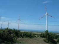 Khánh thành nhà máy điện gió đầu tiên tại Việt Nam