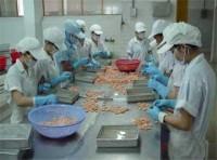 4 tháng, xuất khẩu tôm Việt Nam tăng 4,5%