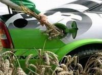 Sản xuất nhiên liệu sinh học: Bước phát triển ấn tượng