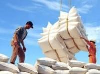 Xuất khẩu gạo - Đi tìm đầu ra