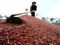 Sôi động hoạt động nông nghiệp 6 tháng đầu năm