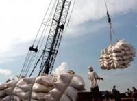 Nâng dự báo xuất khẩu gạo lên 6,2 triệu tấn trong năm 2012