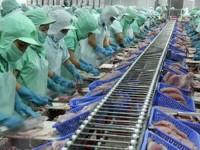 Triển vọng xuất khẩu hàng Việt vào Braxin