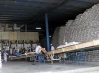 Quy định về kinh doanh xuất khẩu gạo: Thiếu thực tế
