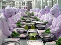 Cho phép 380 doanh nghiệp thủy sản Việt Nam xuất khẩu vào EU