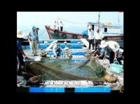 Việt Nam dự hội nghị nuôi trồng thủy sản châu Á