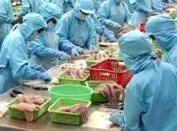 Chương trình thanh tra cá da trơn của USDA có thể bị bãi bỏ