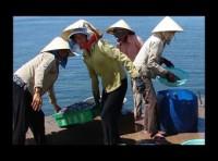 Bảo hiểm xã hội tự nguyện: Chưa thu hút người lao động