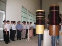 Cần phát triển PTNTĐ về kỹ thuật điện cao áp tương đương các nước trong khu vực