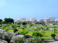 Petrolimex: Đầu tư phát triển khoa học công nghệ làm đòn bẩy then chốt