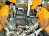 Năm 2011: Xuất khẩu cá tra, ba sa chỉ khoảng 360.000 tấn