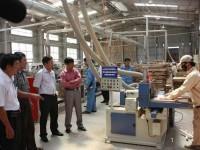 Hỗ trợ doanh nghiệp đầu tư dây chuyền sản xuất gỗ ghép thanh