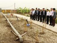 Nhân rộng mô hình xử lý nước thải sau chăn nuôi