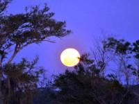 Tạo nhiệt và điện trong đêm trăng