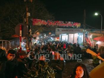 Nhộn nhịp chợ hoa lớn nhất Hà Nội những ngày giáp Tết