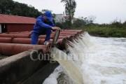 Đã cấp nước cho gần 60.000 ha diện tích gieo trồng vụ Đông Xuân