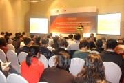 Đánh giá tiềm năng điện mặt trời nối lưới ở Việt Nam