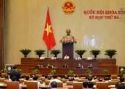 Quốc hội nghe báo cáo và thảo luận về Dự thảo Luật quản lý ngoại thương