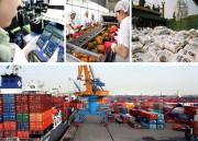 Cơ cấu xuất khẩu dịch chuyển theo hướng giá trị gia tăng ngày càng cao