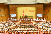 Năm 2019 Quốc hội giám sát những gì?