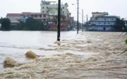 EVN ra công điện thượng khẩn phòng chống bão Sarika