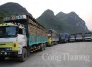 Tiếp tục hoàn thiện cơ chế điều phối thực thi cam kết FTA