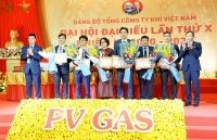 pv gas to chuc thanh cong dai hoi dai bieu lan x nhiem ky 2020 2025