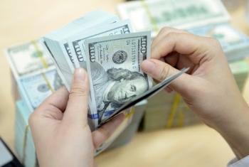 Tỷ giá ngoại tệ ngày 4/2: Đồng USD duy trì sắc xanh