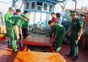 Bộ đội Biên phòng Cà Mau bắt quả tang 3 tàu mua, bán dầu lậu trên biển