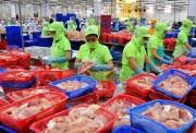 Xuất khẩu quý I/2017: Tăng trưởng vượt dự kiến