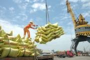 Định hướng xuất khẩu gạo đến 2030: Giảm lượng, tăng giá trị