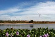 Đan Mạch chia sẻ kinh nghiệm phát triển điện gió với Việt Nam