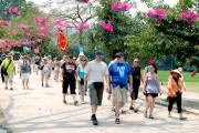 Hơn 3 triệu lượt khách quốc tế đến Việt Nam