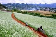 Quy hoạch Mộc Châu thành khu du lịch quốc gia