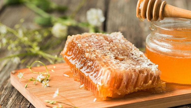 Hoa Kỳ tiếp nhận hồ sơ điều tra chống bán phá giá mật ong Việt Nam