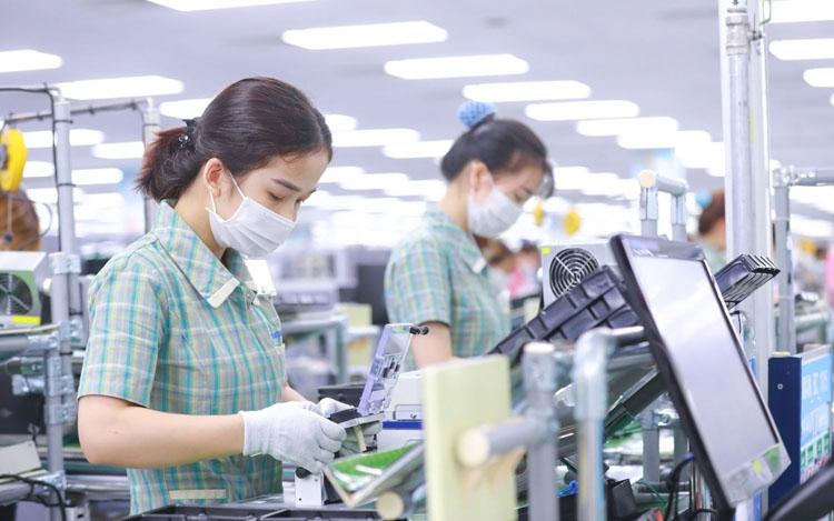 Doanh nghiệp Argentina kỳ vọng mở rộng kinh doanh tại Việt Nam