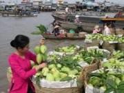 Sắp diễn ra 'Tuần lễ giới thiệu Nông sản tiêu biểu Cần Thơ tại Hà Nội'