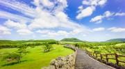 Bay thẳng đến Đảo tình yêu Jeju Hàn Quốc cùng Vietravel