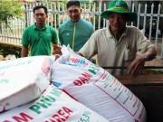 Doanh nghiệp sản xuất phân bón mong muốn được vào diện chịu thuế GTGT