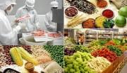 Bộ Công Thương lấy ý kiến góp ý về quy định xử phạt vi phạm hành chính về an toàn thực phẩm