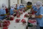 Xuất khẩu rau quả- Đáp ứng các quy chuẩn để tăng xuất khẩu vào EU