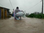Hàn Quốc viện trợ 1 triệu đô la Mỹ khắc phục thiệt hại bão Damrey